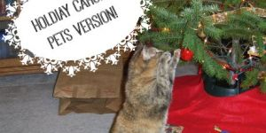 If Our Pets Sang Christmas Carols