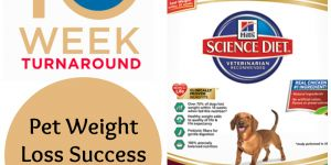 #PerfectWeight Success Stories, Enter To Win For Your Own Success!