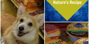 Choosing an Affordable Grain Free Pet Food #NaturesRecipe