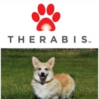 The Corgis Are Up And Moving With Therabis
