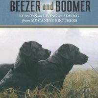 Our Favorite Pet Books, Movies, and TV (Includes Canine Lymphoma and Cancer Books)