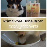 How To Use Primalvore Bone Broth to Up Your Dog's Nutrition Plan