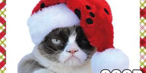 Have A Grumpy Christmas