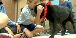Dog Abandoned For Dead Gets Rescued By Teenagers