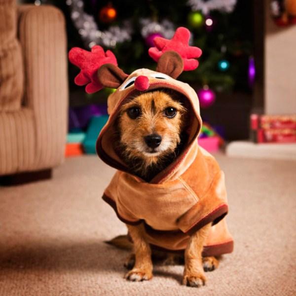 christmas3