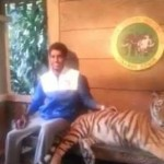 Posing With a Tiger in Indonesia Fail