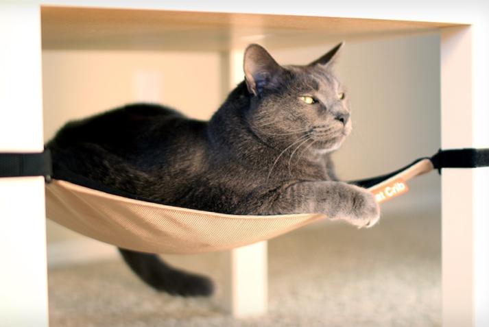 The Cat Crib