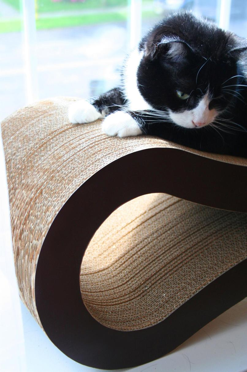 Pet Fusion Cat Scratcher lounge