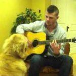 Golden Retriever Loves Guitar!