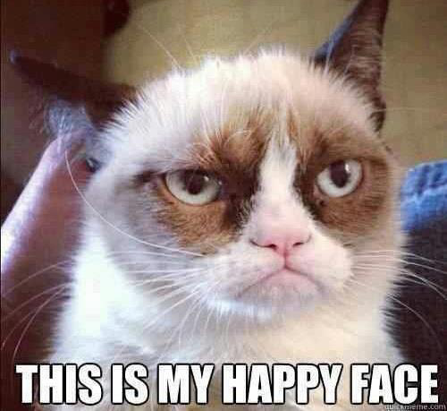 grumpy cat happy face
