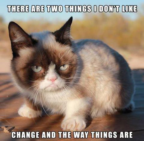 grumpy cat meme2