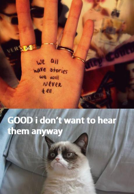 grumpy cat meme4