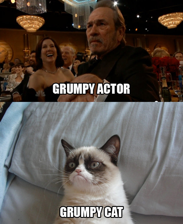 Grumpy Cat4 Some Pets