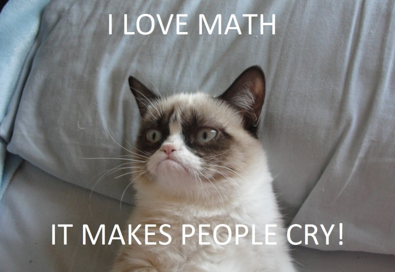 grumpy cat8