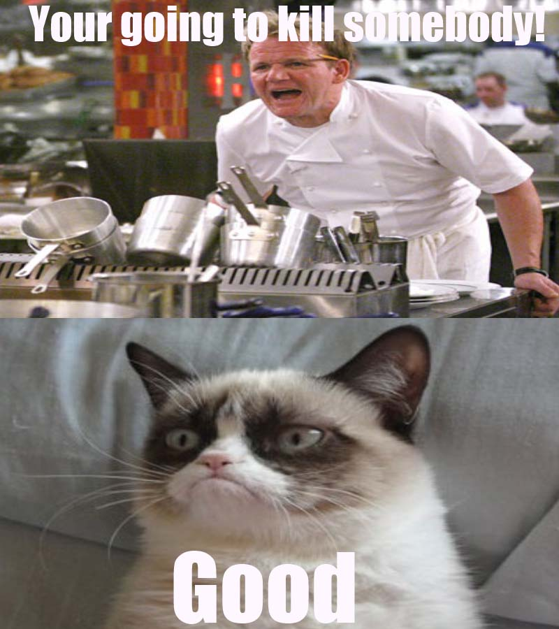 grumpy_cat_gordon_ramsay
