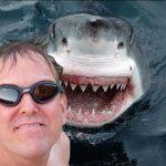 20 Hilarious Animal Photobombs