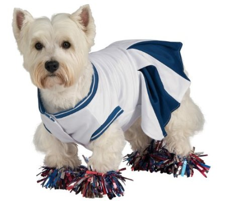 Deluxe Cheerleader Pet Costume
