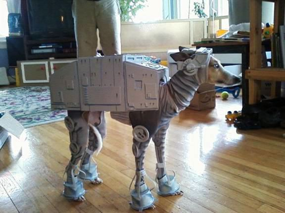 Dogs in costume_ Star Wars