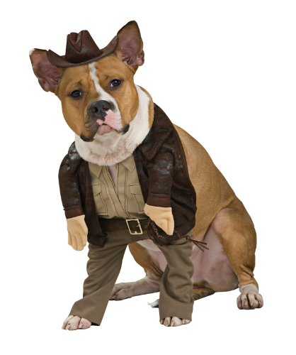 Indiana Jones Dog Halloween Costume