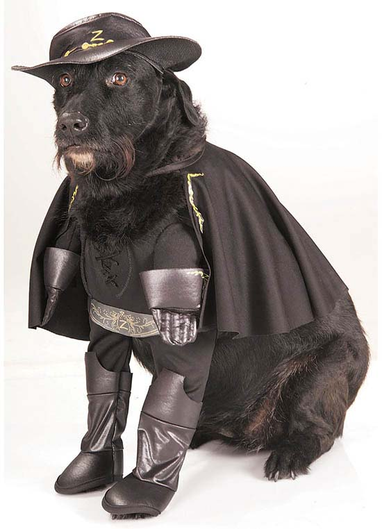 Rubies Zorro Pet Costume