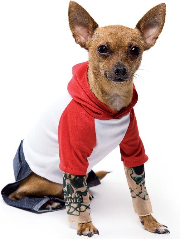 Tattoo Dog Pet Costume