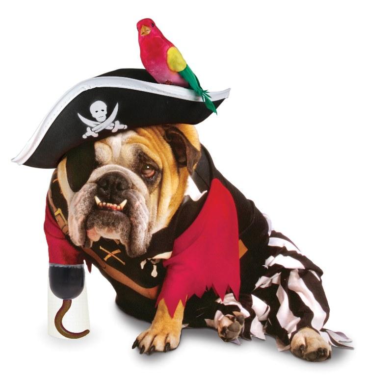 Zelda Wisdom - Pirate Dog Costume