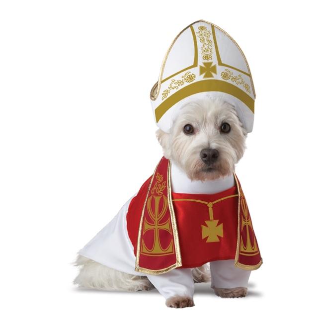 holy-hound-dog-costume