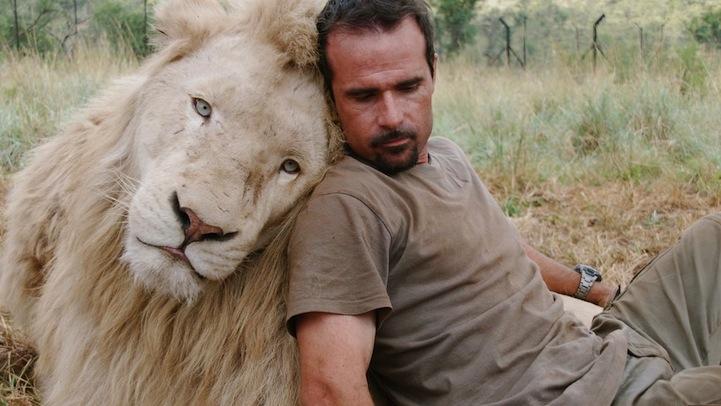 lion whisperer10