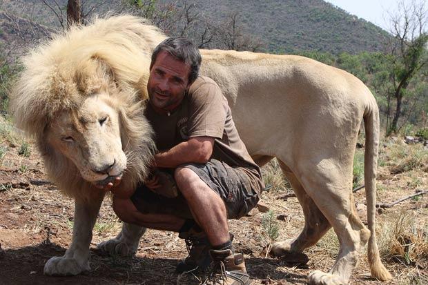 lion whisperer11