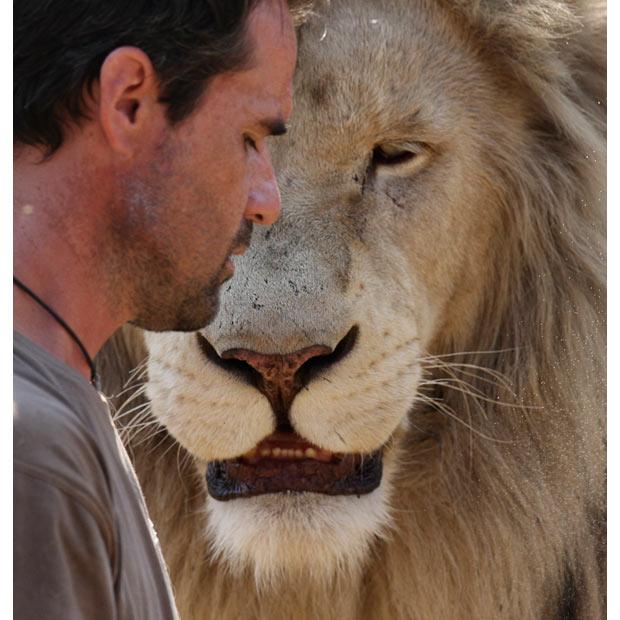 lion whisperer13