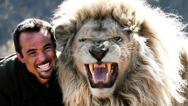 lion whisperer5