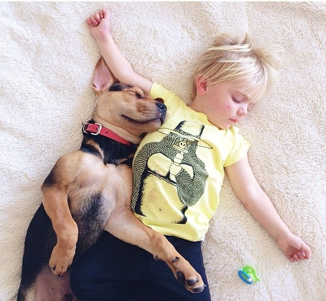 little boy and puppy 3