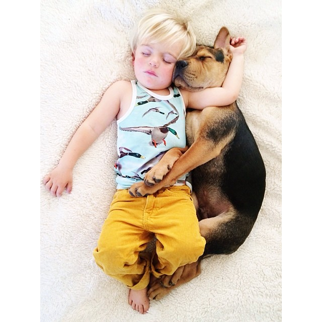 toddler and puppy 3