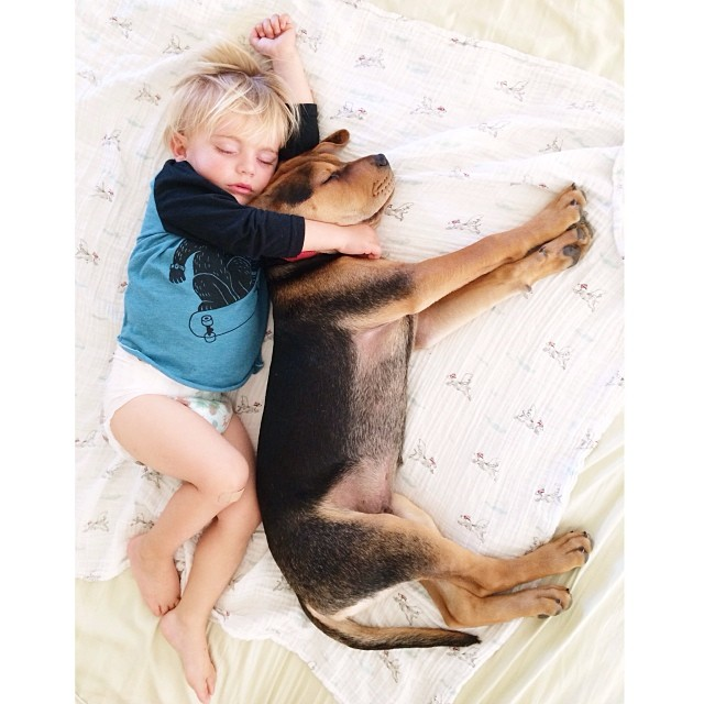 toddler and puppy 4