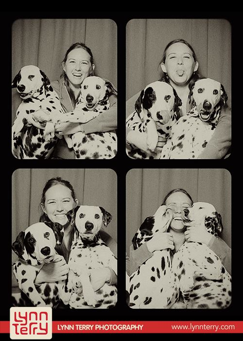 dogs-in-photo-booths10