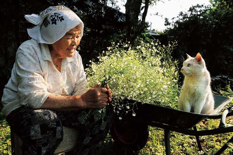 japanese grandma and her cat12