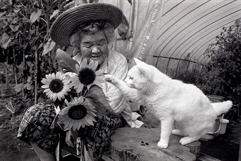 japanese grandma and her cat16