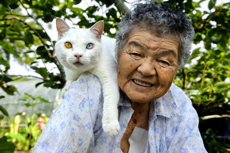 japanese grandma and her cat17