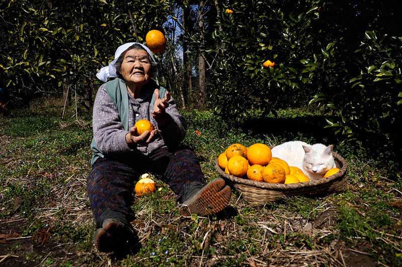 japanese grandma and her cat18