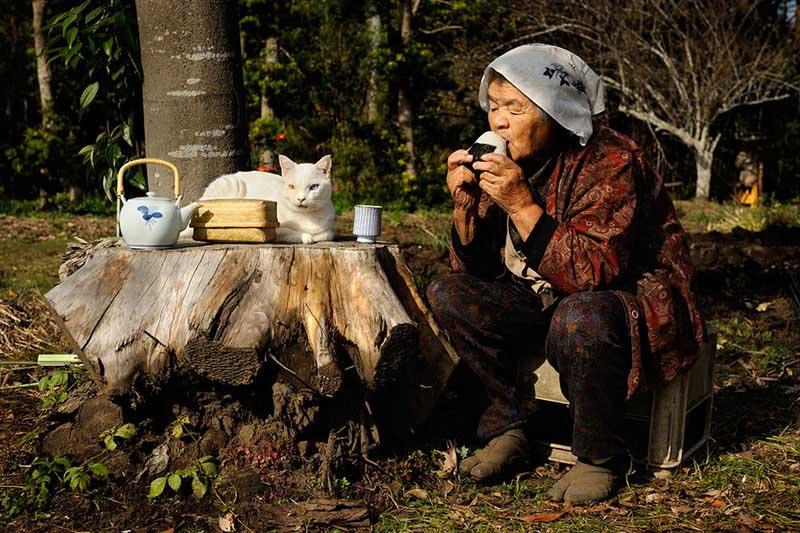 japanese grandma and her cat21