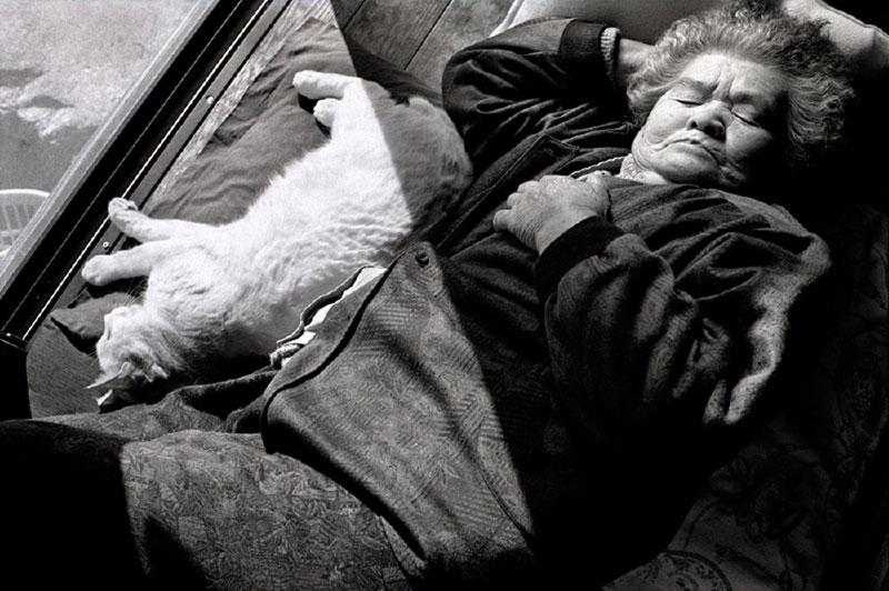 japanese grandma and her cat3