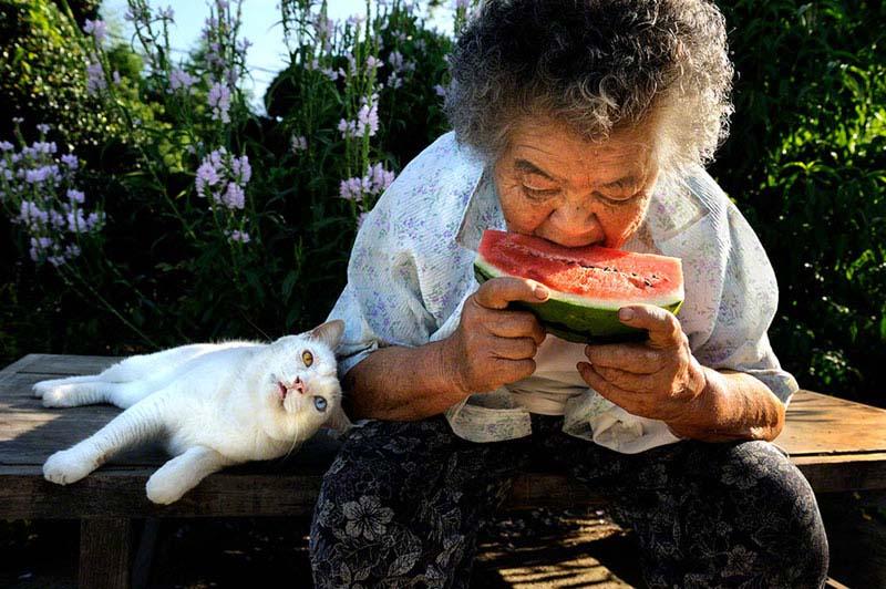 japanese grandma and her cat5