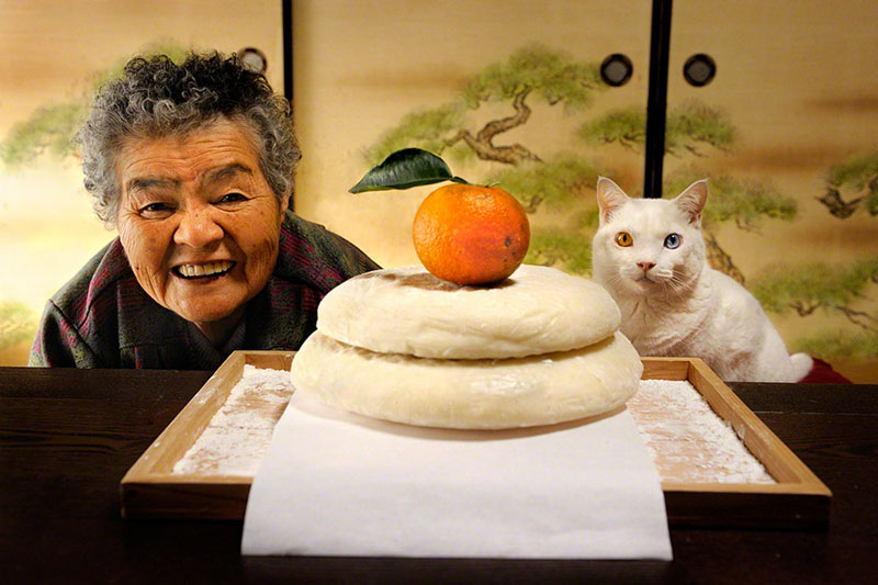 japanese grandma and her cat8