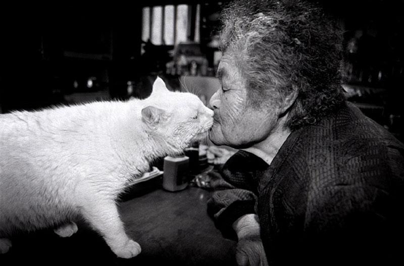 japanese grandma and her cat9