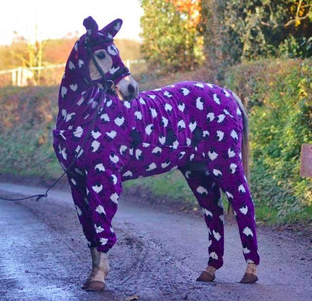 horse onesie