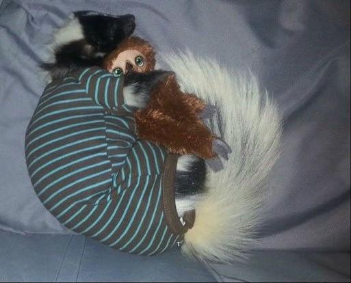 skunk-620x