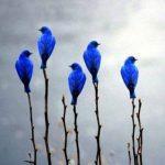 Animal Jigsaw Puzzles: Beautiful Blue Birds