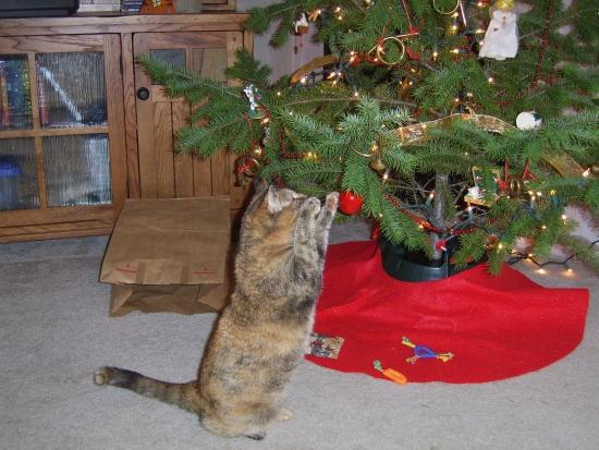 Catmas tree 7