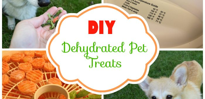 DIY Dehydrated Dog Treats