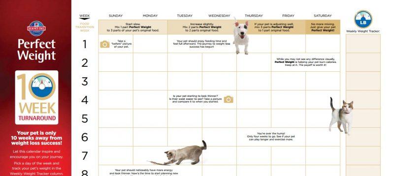 hills challenge calendar